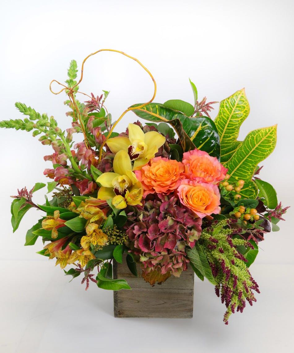 Allens Flowers Allensflowers1 Twitter Profile Twipu
