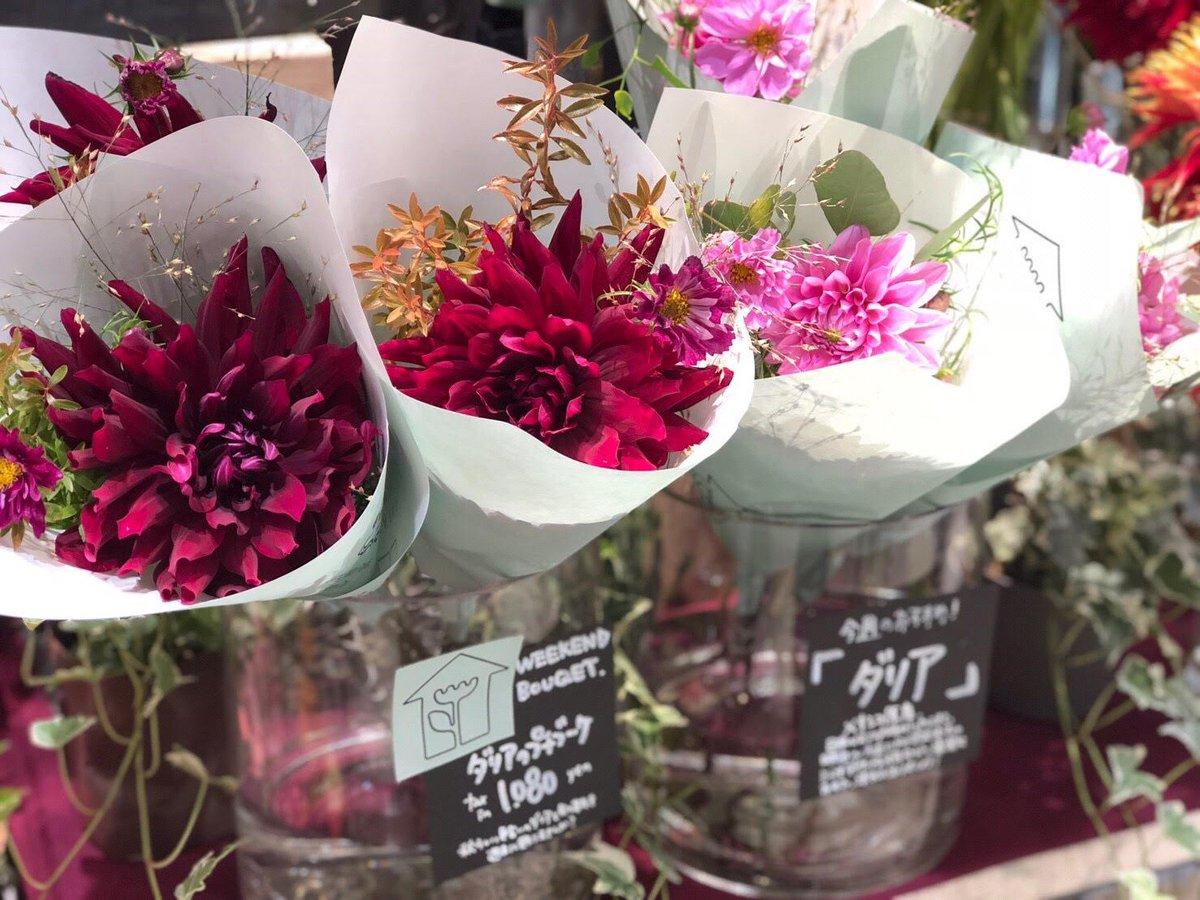 今日ご紹介するのはペリエ千葉店の #ダリアのブーケ。真っ直ぐに咲く花の美しさを感じられるように長めのブーケにし、旬のコスモスやパニカムでさらに秋らしさをプラスしたのがポイントですよ(*´∀`*)  それでは花と素敵な週末を♬ #weekendflower