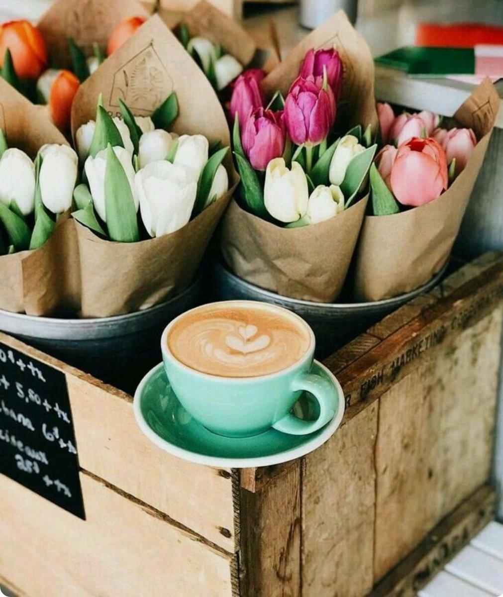 çiçek Market On Twitter çiçek Market Keyifli Hafta Sonları Diler