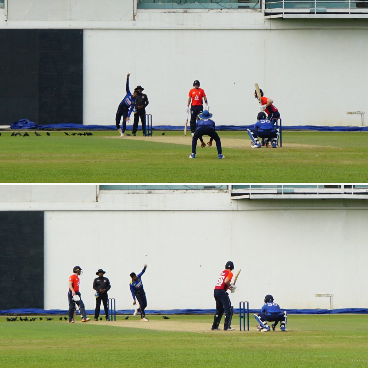 """""""He bowls with his left, he bowls with his right..."""" Ambidextrous bowler Kamindu Mendis is facing England in Colombo. #bbccricket"""