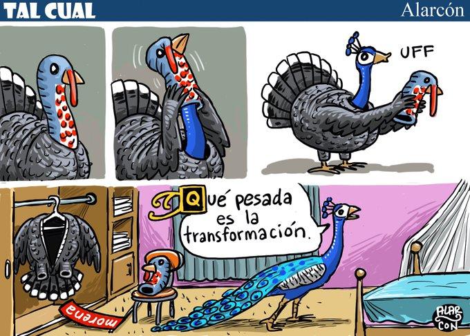 #BuenViernes #TalCual La opinión de @alarcondibujos: Qué pesada es la transformación. ➡️ Photo