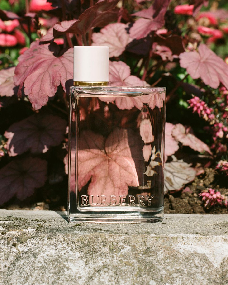 With floral notes of jasmine and violet, introducing our new fragrance for women, Her, inspired by the spirit of London #BurberryHer #HerLondon #BurberryBeauty brby.co/79z