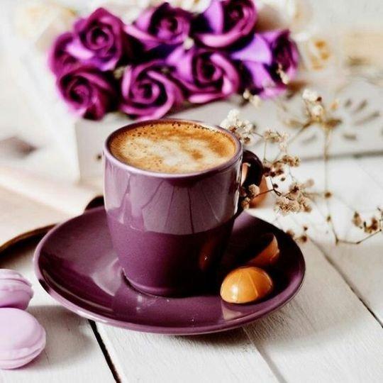 Картинки с добрым утром цветами и шоколадом, смешные поздравления