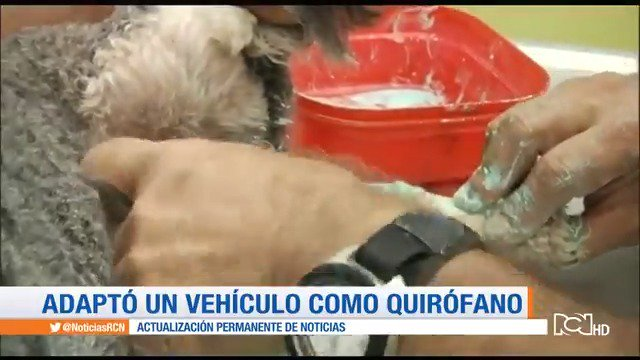 Un veterinario móvil ayuda a animales en las calles de Bucaramanga https://t.co/SNuLXTqquH https://t.co/rLcotZnYrj