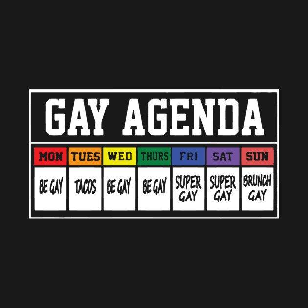 Gay agenda lady's tank illuminated brew works