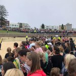 Bondi Beach Twitter Photo
