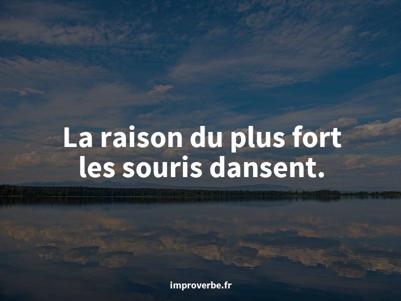 Comme on dit : « La raison du plus fort les souris dansent. » — un proverbe improbable #quote #jeudiconfession  - FestivalFocus
