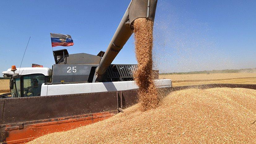 Минсельхоз США заявил, что российское зерно — самое конкурентоспособное на мировом рынке. Россия потеснила американских и европейских экспортёров в Африке и Азии. Из-за «жёсткой конкуренции» с Москвой упал экспорт пшеницы из США в Мексику https://t.co/IpRV85fQrk