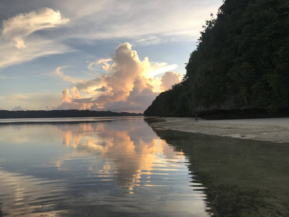 Palau 7th Wonder Dive And Tours On Twitter While Spending Your Vacation On Your Dream Destination Like Palau It S Very Good To Do Beach Day And Spend A Night With Your