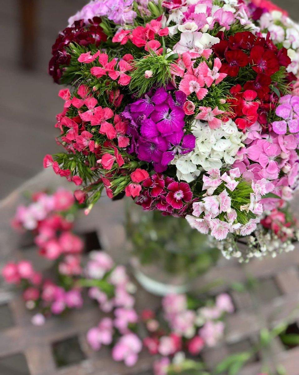 çiçek Market On Twitter Doğanın Renkleri Gibi Harika Hafta Sonları