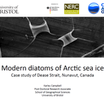 Interested in #Arctic #marine #diatoms? Check out slides here...