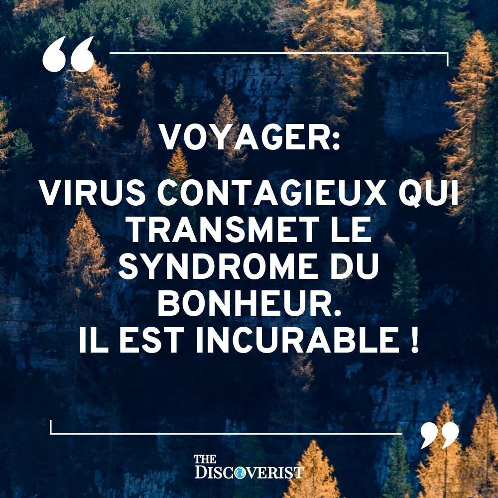 Chris Rébba On Twitter 2 0 1 9 Voyage