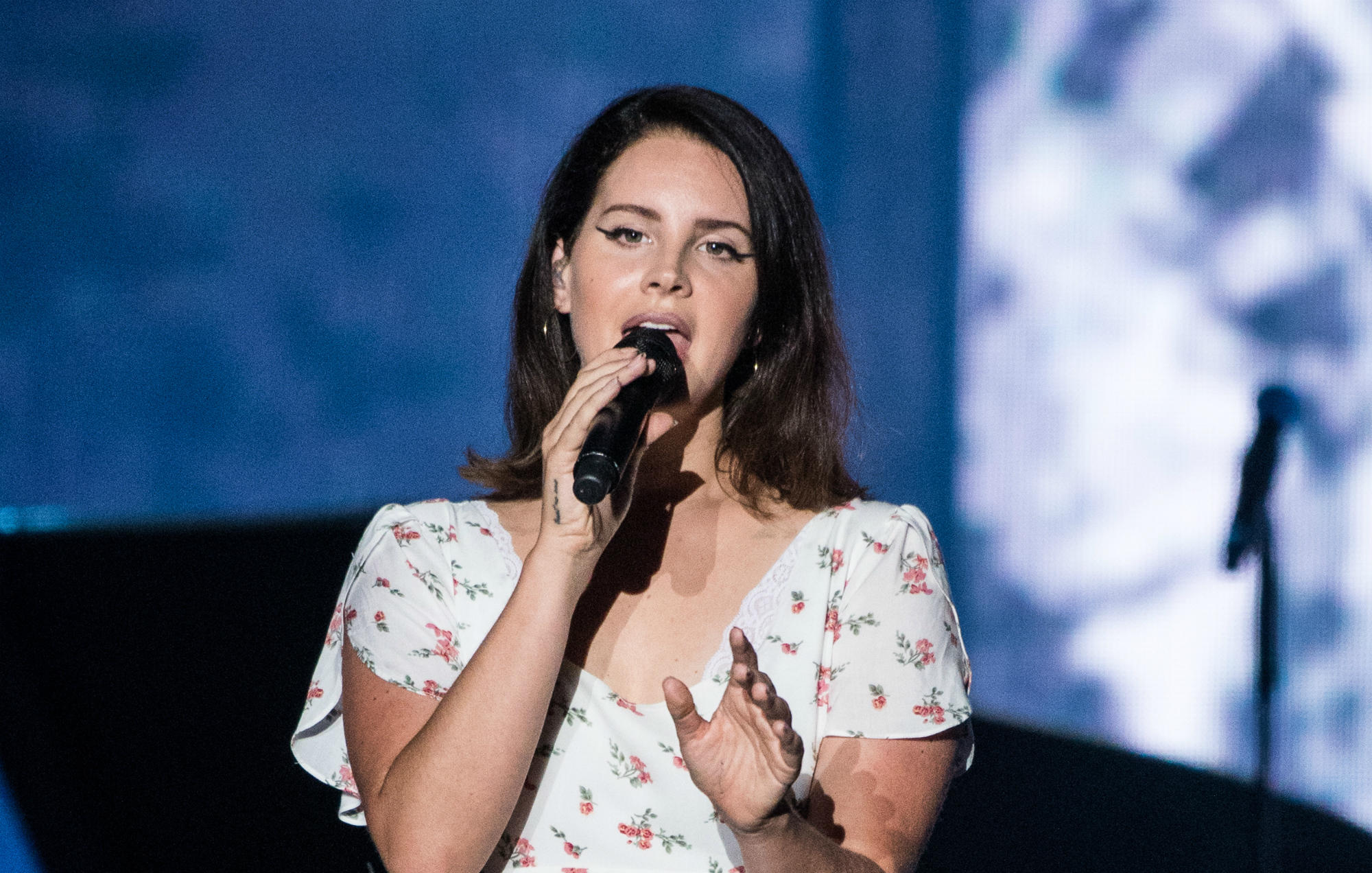 Lana Del Rey's stalker sentenced to one year in prison https://t.co/GJ90UfitWJ https://t.co/GUfKzn8ndr