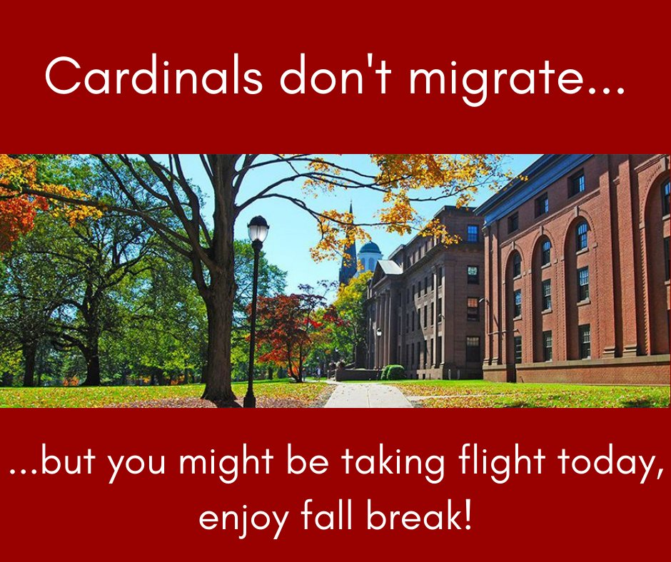 test Twitter Media - Enjoy fall break, Cardinals! 🍁🍂 https://t.co/u83CzqiYQE
