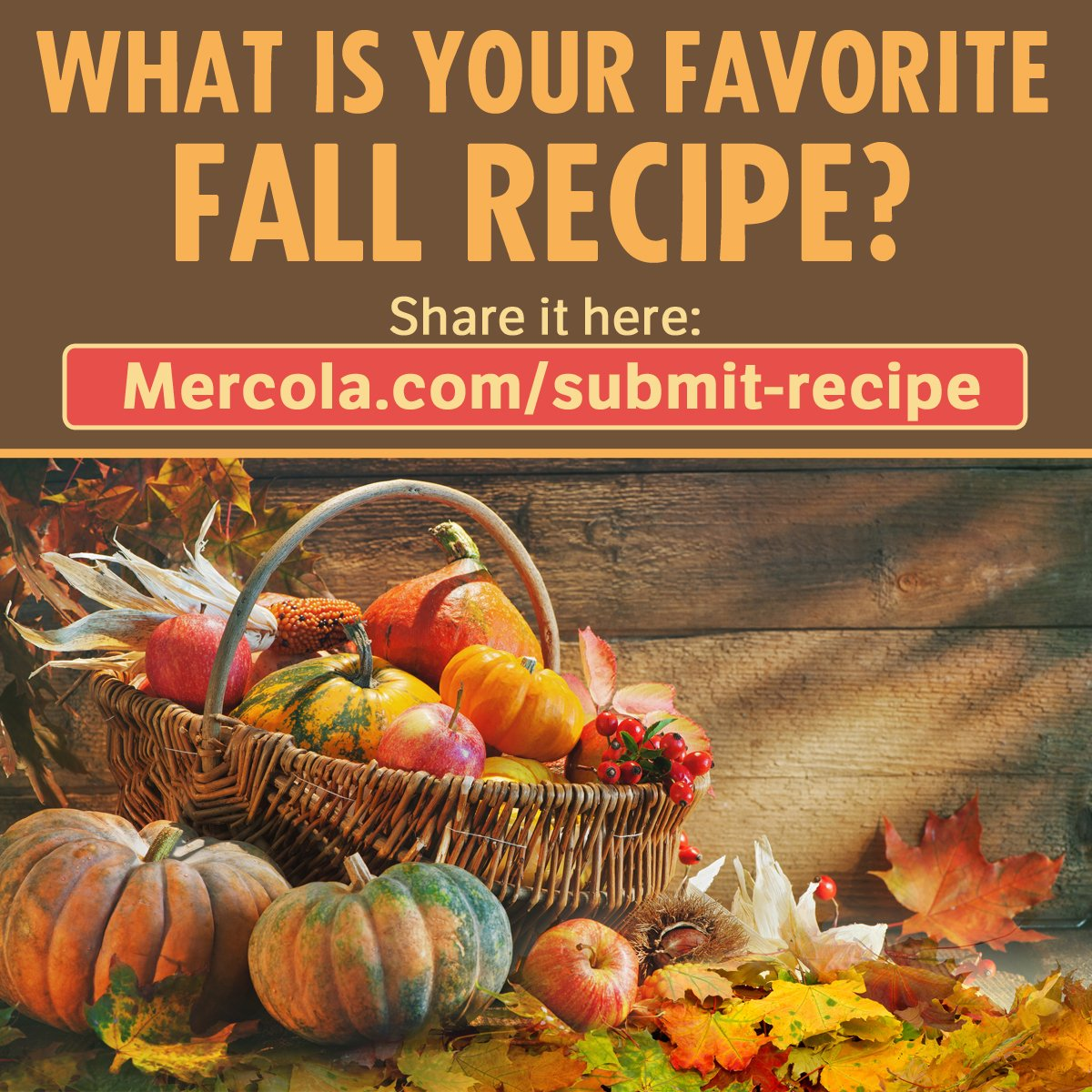 Do you have a fall recipe you're so proud of you want to share it with the world? We'd love to see it! Visit https://t.co/YSg2sKVF0r now for a chance to get featured on our site.