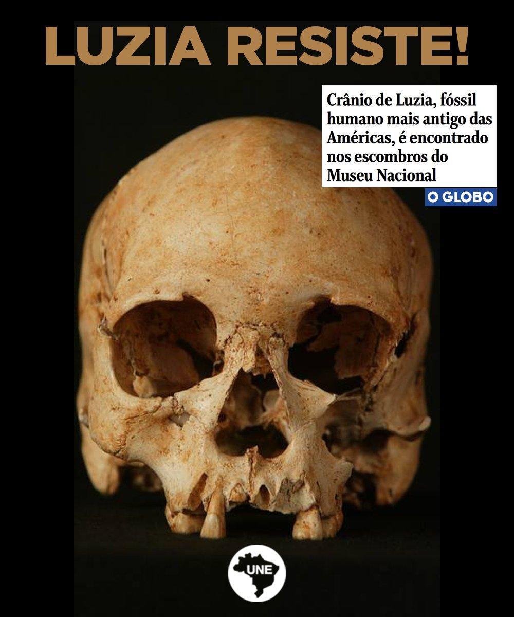 Pelo menos 80% dos fragmentos do crânio de Luzia, fóssil humano mais antigo das Américas, foram identificados, segundo pesquisadores. Luzia resiste! Leia: https://t.co/Su9R3pWtWX