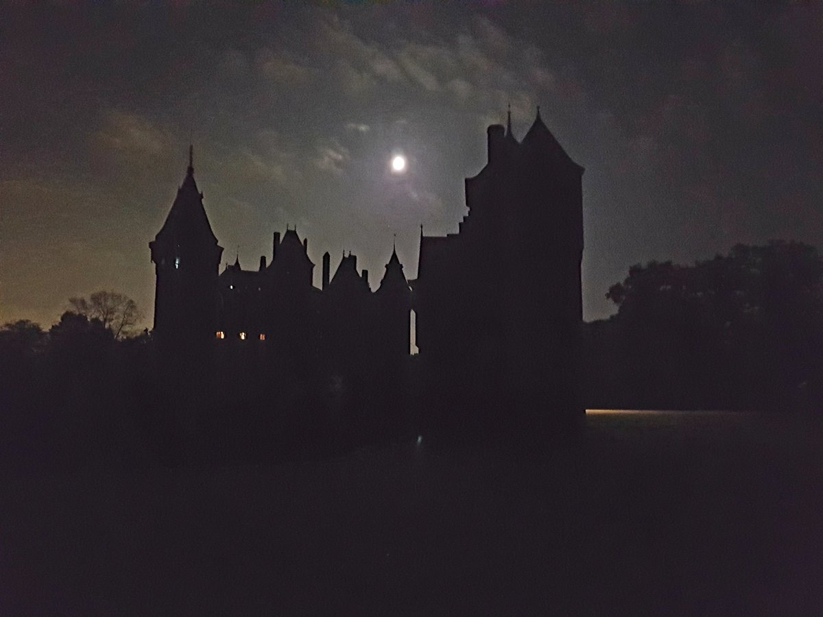 Vleren bij kasteel De Haar (Haarzuilens, Ut.), oftewel luisteren en kijken naar vleermuizen. Met name de dwergvleermuizen waren nog actief. @ZOogdierUTrecht ,#Vlen