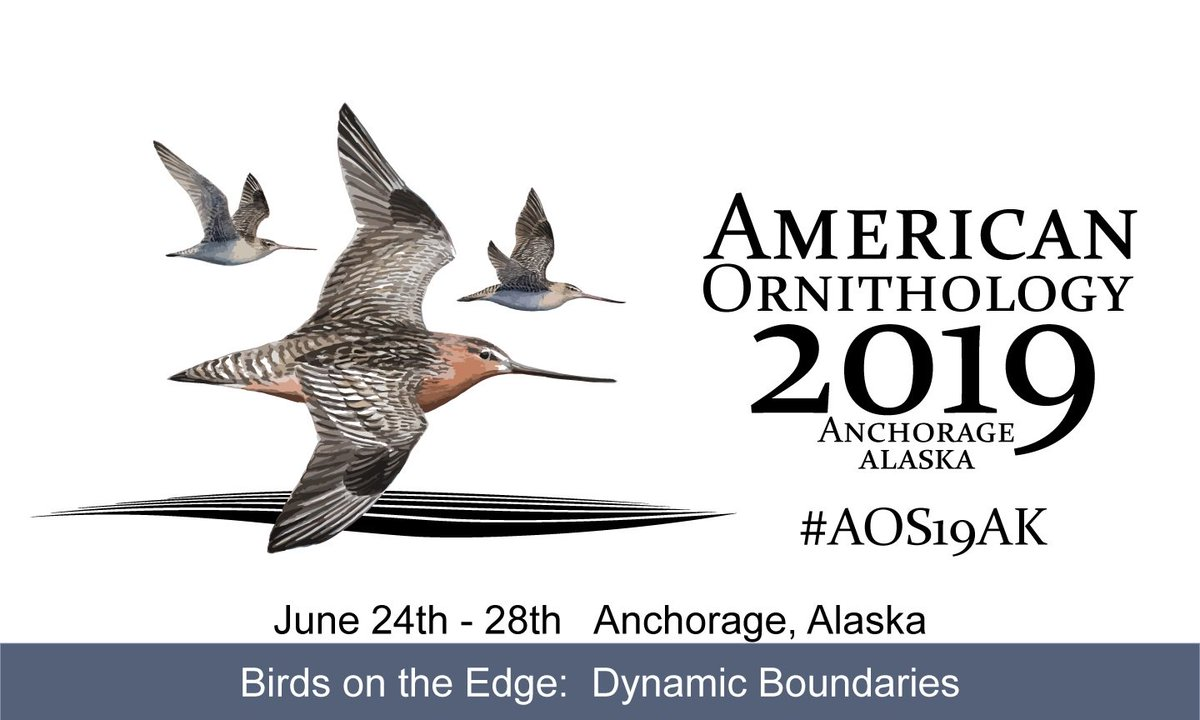 Early bird registration for #AOS19AK is now live! The theme of the meeting will be Birds on the Edge: Dynamic Boundaries. We hope youll join us in Anchorage next June! amornithmeeting.org/registration/