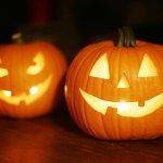 Image for the Tweet beginning: It's pumpkin time. Download 13-pics