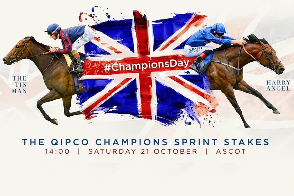 """Live Stream Online Free 2018-2019 auf Twitter: """"[[WATCH/FREE]]] British Champions Day live streamingGo to Live>>> https://t.co/qk2EhfGuzw Go to Live>>> https://t.co/8beyBMsmVD… https://t.co/By9ZqEA3zK"""""""