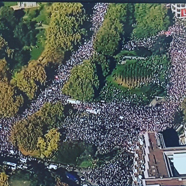 Massive gang of non-racists maraud the streets of London chanting non-racist slogans and not harassing foreigners. #PeoplesVoteMarch