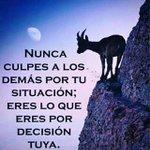 #Lunesferiado Twitter Photo