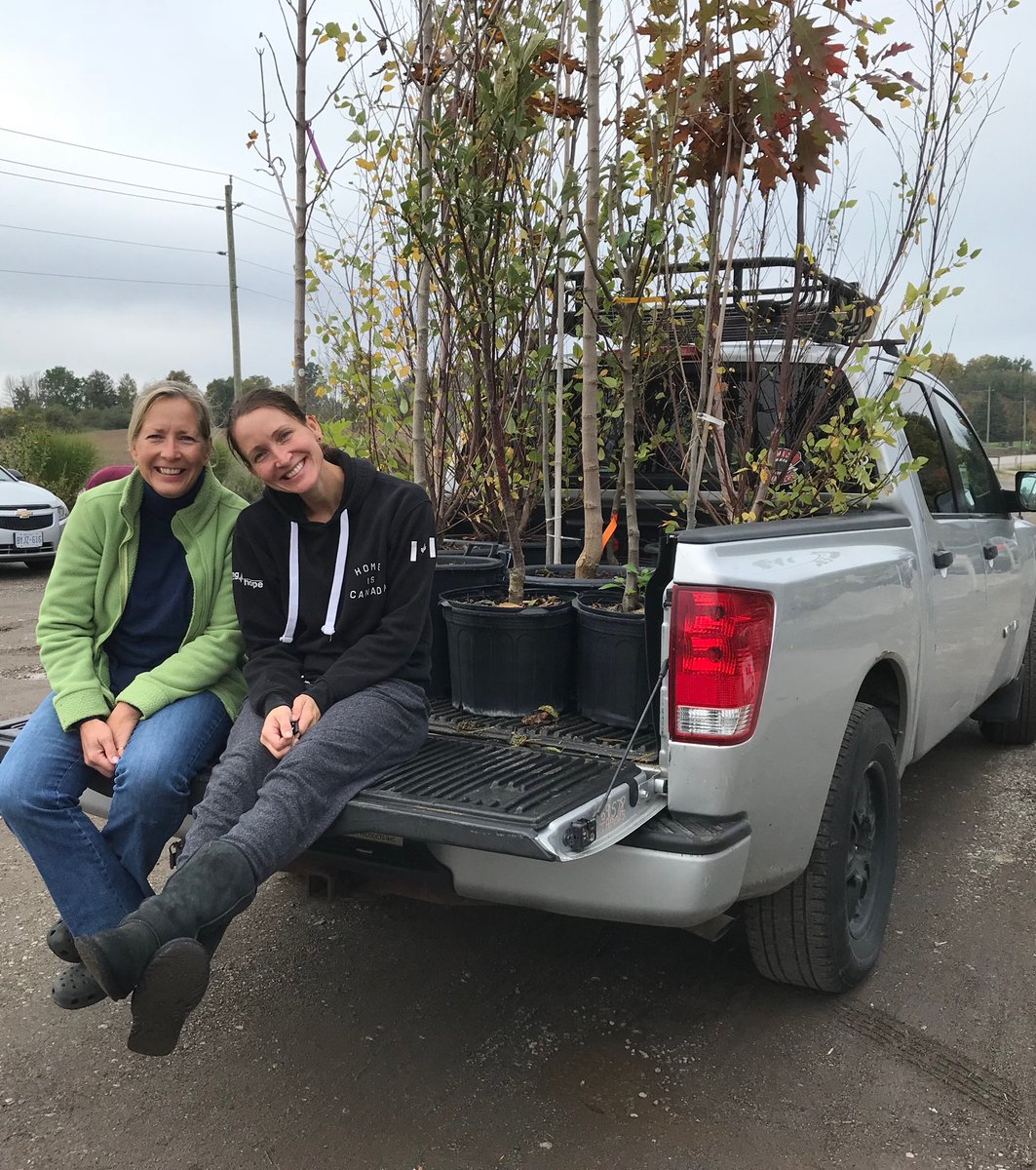 When the nursery starts marking down 50% the #gardensisters stock up. Aaah but we actually have to get them in the ground now. Pear, Apple, maple, oak, birch - a perfect day to plant. <br>http://pic.twitter.com/40UJqbiUjz