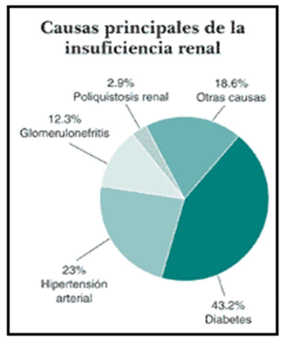 Cómo la hipertensión causa enfermedad renal