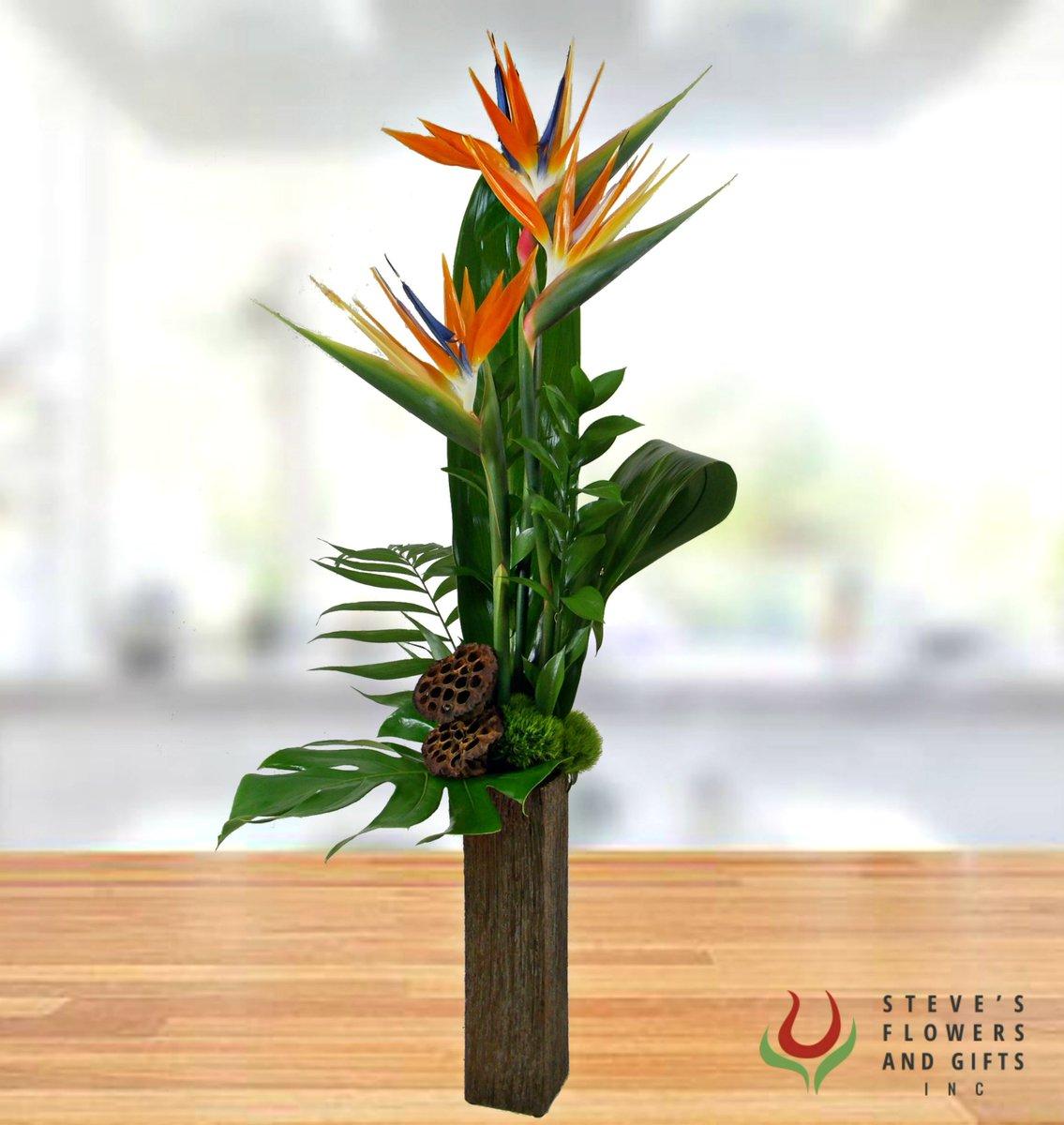 Steves flowers indy stevesflowers twitter 0 replies 1 retweet 0 likes izmirmasajfo