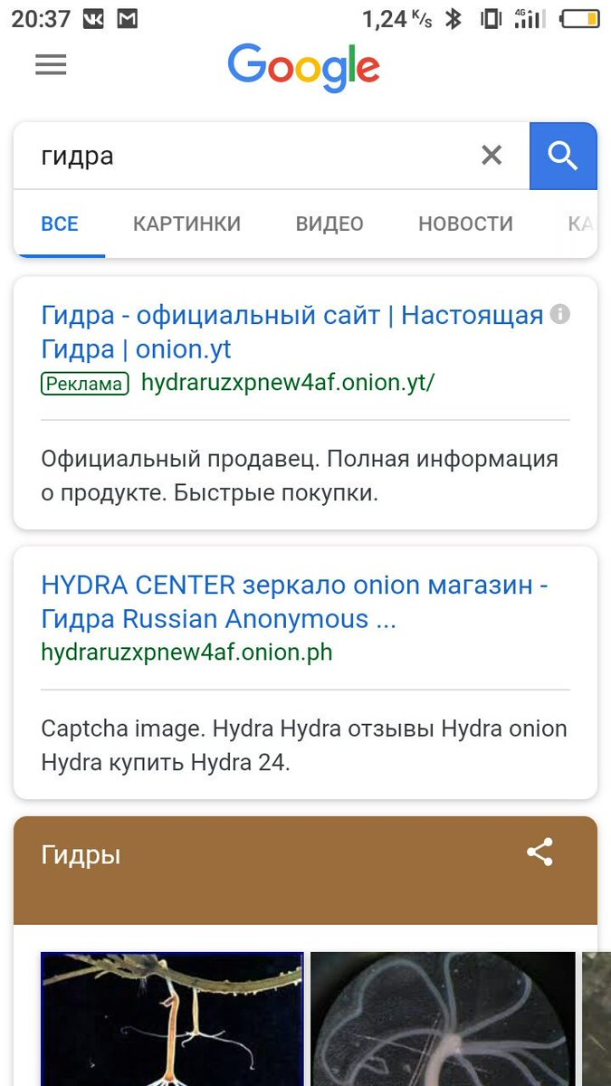 adobe flash player не работает в tor browser gydra