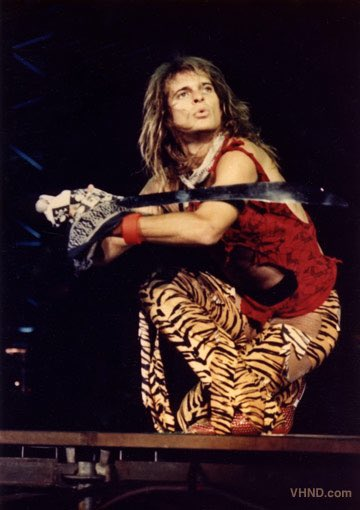 Happy 64th Birthday To David Lee Roth - Van Halen