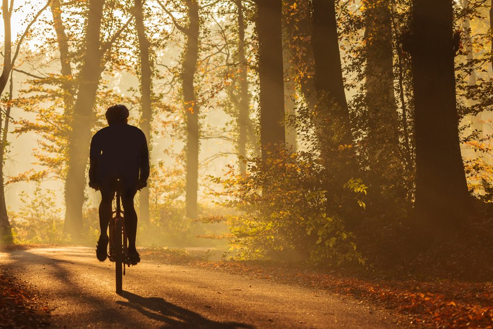 test Twitter Media - Today is #WorldMentalHealthDay regular exercise such as #cycling from 3 to 5 times a week can help reduce poor mental health. Those who cycle already will know the positive impacts -it's a great way to chase away the blues 🚲🚲🚲🚲 https://t.co/gv20ey4Qma https://t.co/79OeR3tUSS