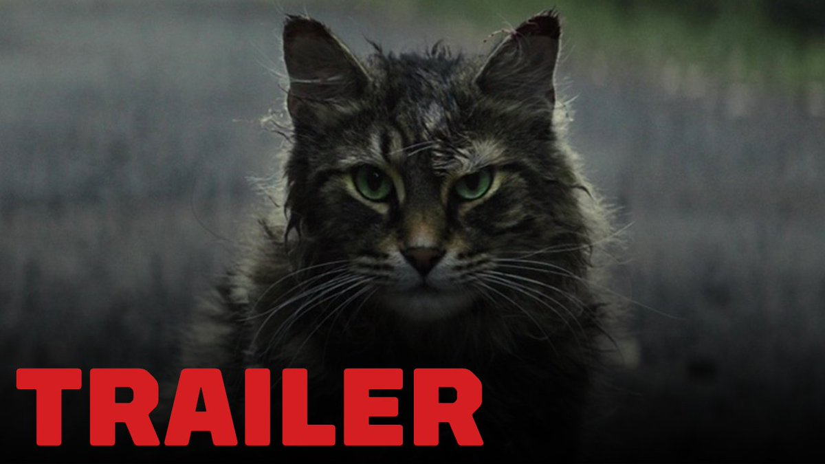 The very first trailer for Stephen King&#39;s Pet Sematary is here!   http:// go.ign.com/g4Aafl2  &nbsp;  <br>http://pic.twitter.com/J6Y3HtkPY7