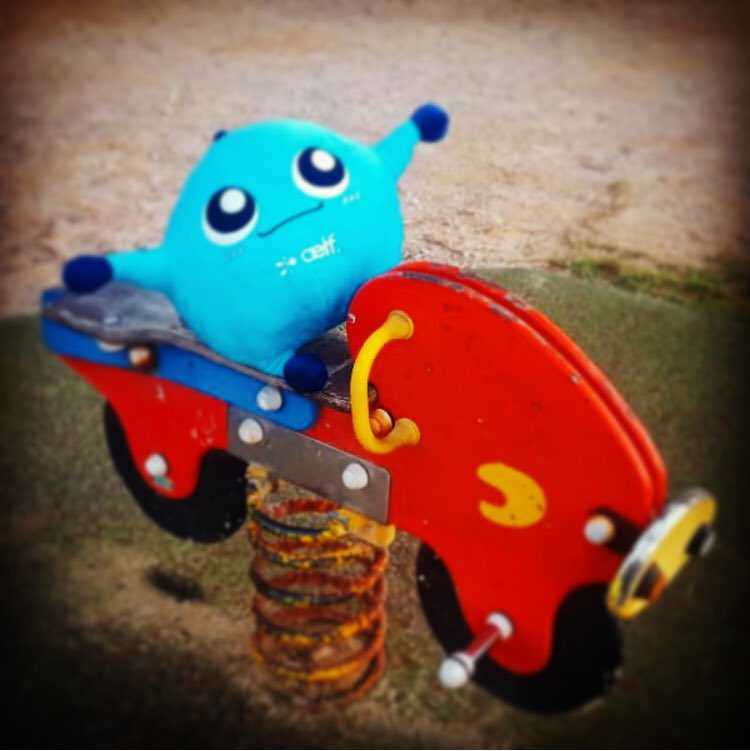 #aelfiego Aelfie's first rodeo. #rodeo #RodeoSeason #aelfblockchain #cryptocurrencies #mallorquinlife #mallorca #elf #aelfe<br>http://pic.twitter.com/5m6NaplTCp