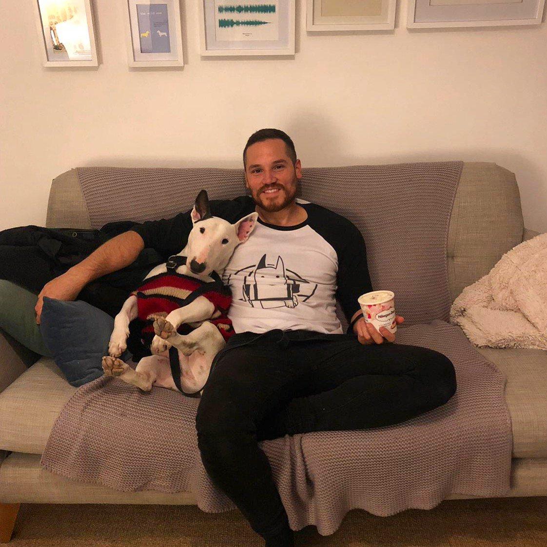 We chill harder than you party . . . . #doglover #doggo #dog #puppy #bullterrier #dogtravel #traveldog #dogsoftwitter #dogsofinstagram #dogmodel #puppers<br>http://pic.twitter.com/6D8rajMoKp