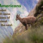 Image for the Tweet beginning: Does #GlobalWarming actually threaten #biodiversity?