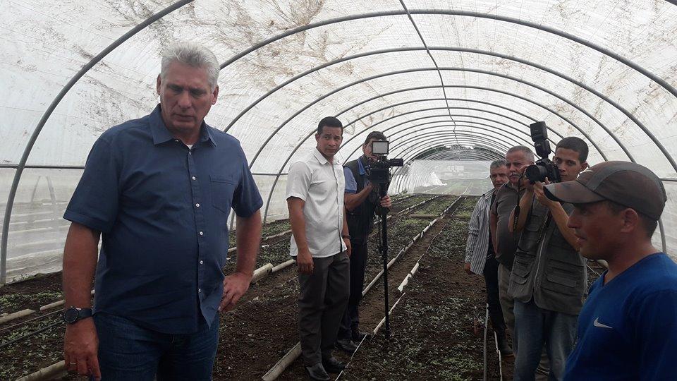 Díaz-Canel visita Pinar del Río tras paso del huracán Michael