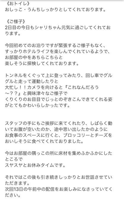 羽田空港のペットホテルにハムてゃん預けてきたんやけど、様子をメールで報告してくれるサービス丁寧すぎて泣く