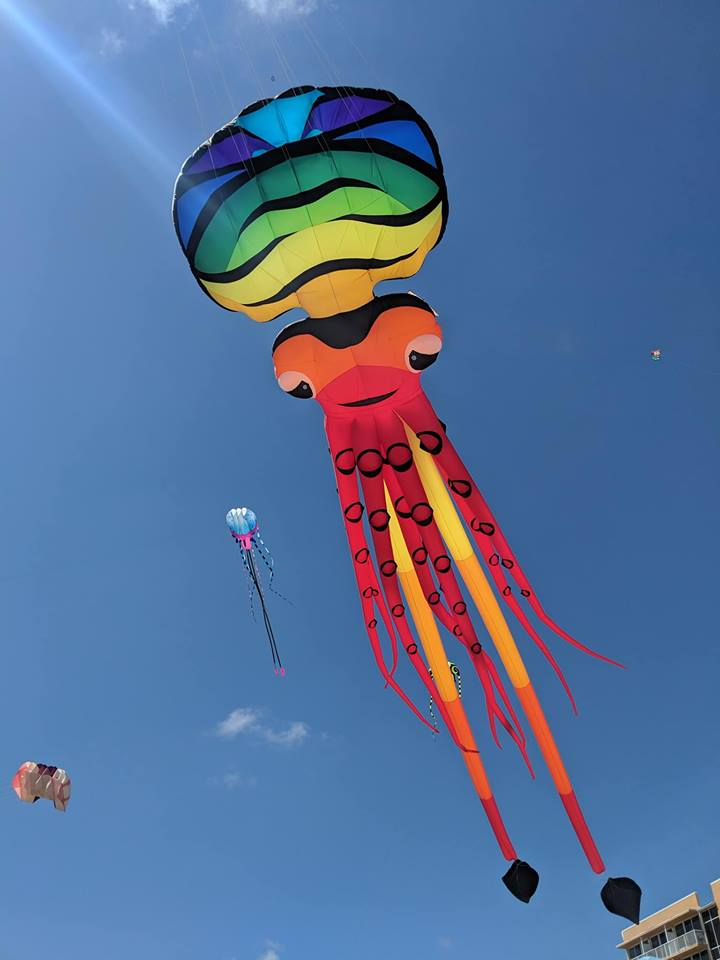 skyward kites inc home