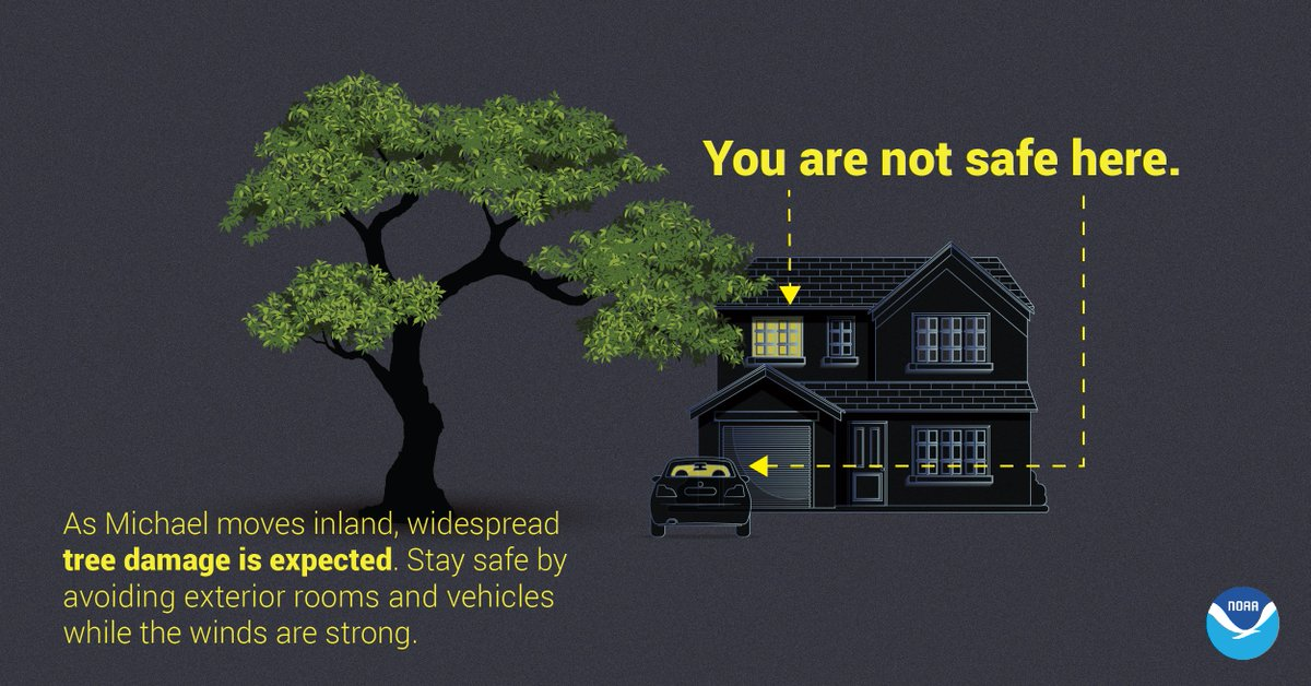 As Michael moves inland, widespread tree damage is expected. Stay safe by avoiding exterior rooms and vehicles while the winds are strong.