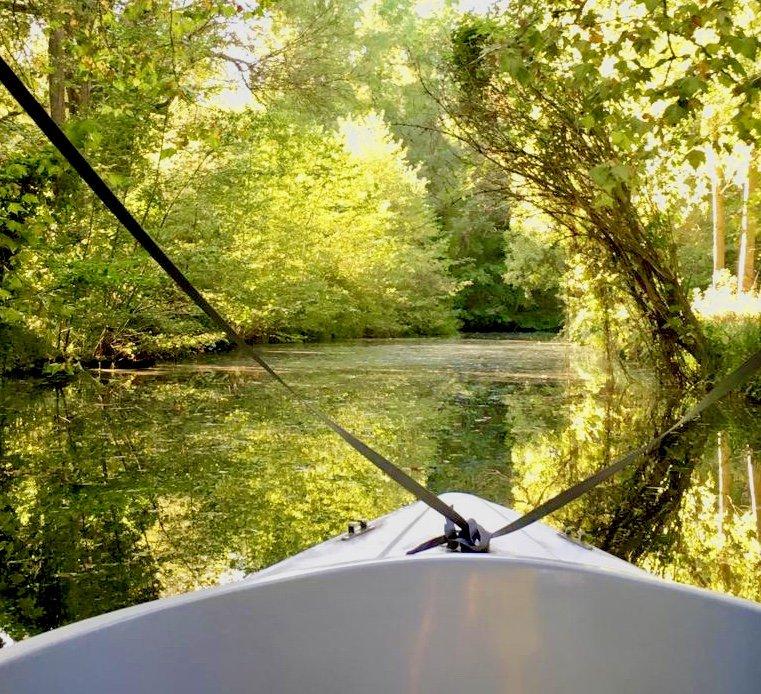 Venez profiter du parc forestier à bord de nos bateaux électriques  pour un moment de détente dans la #nature #chateauCheverny #vacances #enfamille #naturelovers  - FestivalFocus