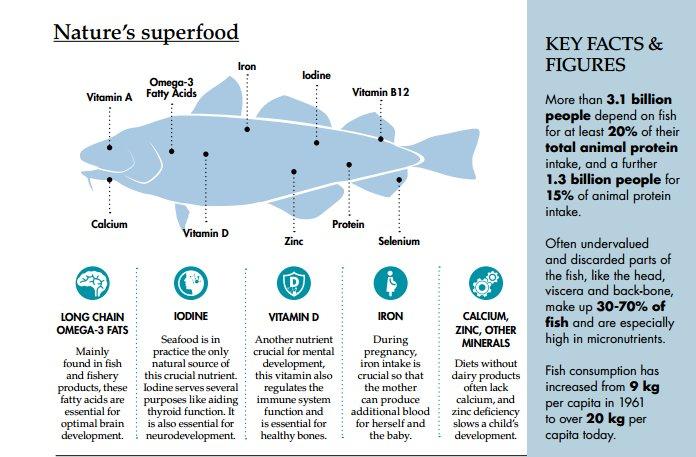 FisheriesAquaculture's photo on #worldobesityday