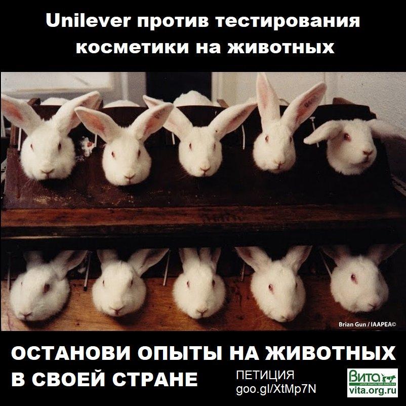 Косметика которая не тестируется на животных купить скачать эйвон