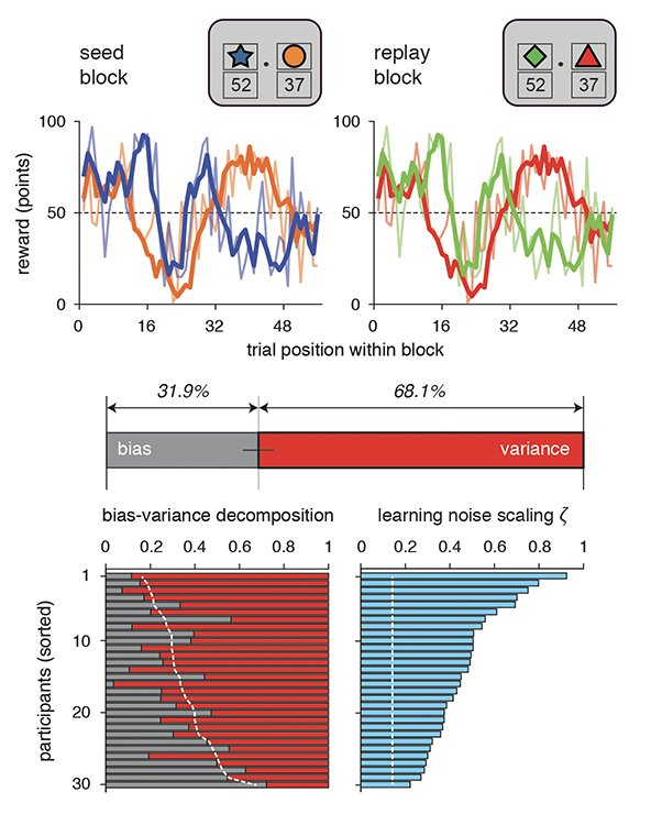 Then, by measuring the consistency of human decisions across repeated sequences of rewards, we validated that most of learning noise is due to random variance rather than to systematic biases – in other words, a misfit of our RL model. 6/16