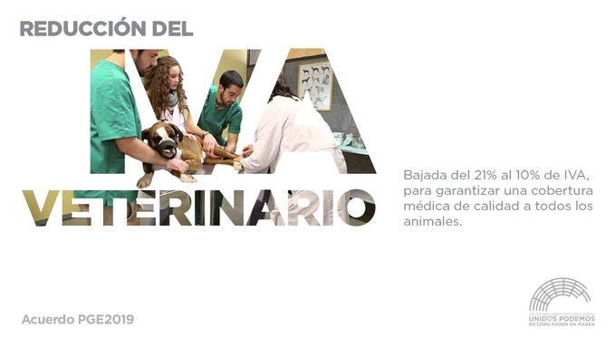 🐶🐴🐱🐰 Hemos conseguido acordar una bajada del IVA veterinario del 21% al 10% reducido para así poder mejorar la cobertura médica de todos los animales. #SíSePuede Photo