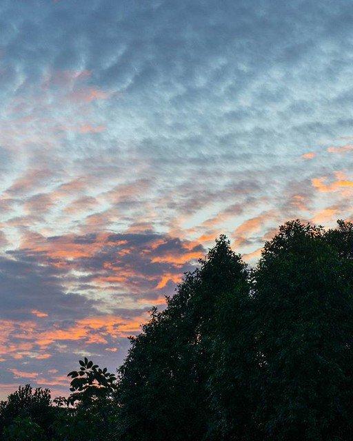 🥇🐶Naoki PT🐶🥇 on Twitter: Reposting @kennyttanaka: - via @Crowdfire  One side of the sky . . . . . Take a look at my blog on bio . . . . . #photography #sonya6000 #a6000 #sony #singapore #fort #skyphotography #photo #trees #sunset #travelblog #travelblogger #naturephotos #photoshoot #hendersonwaves…
