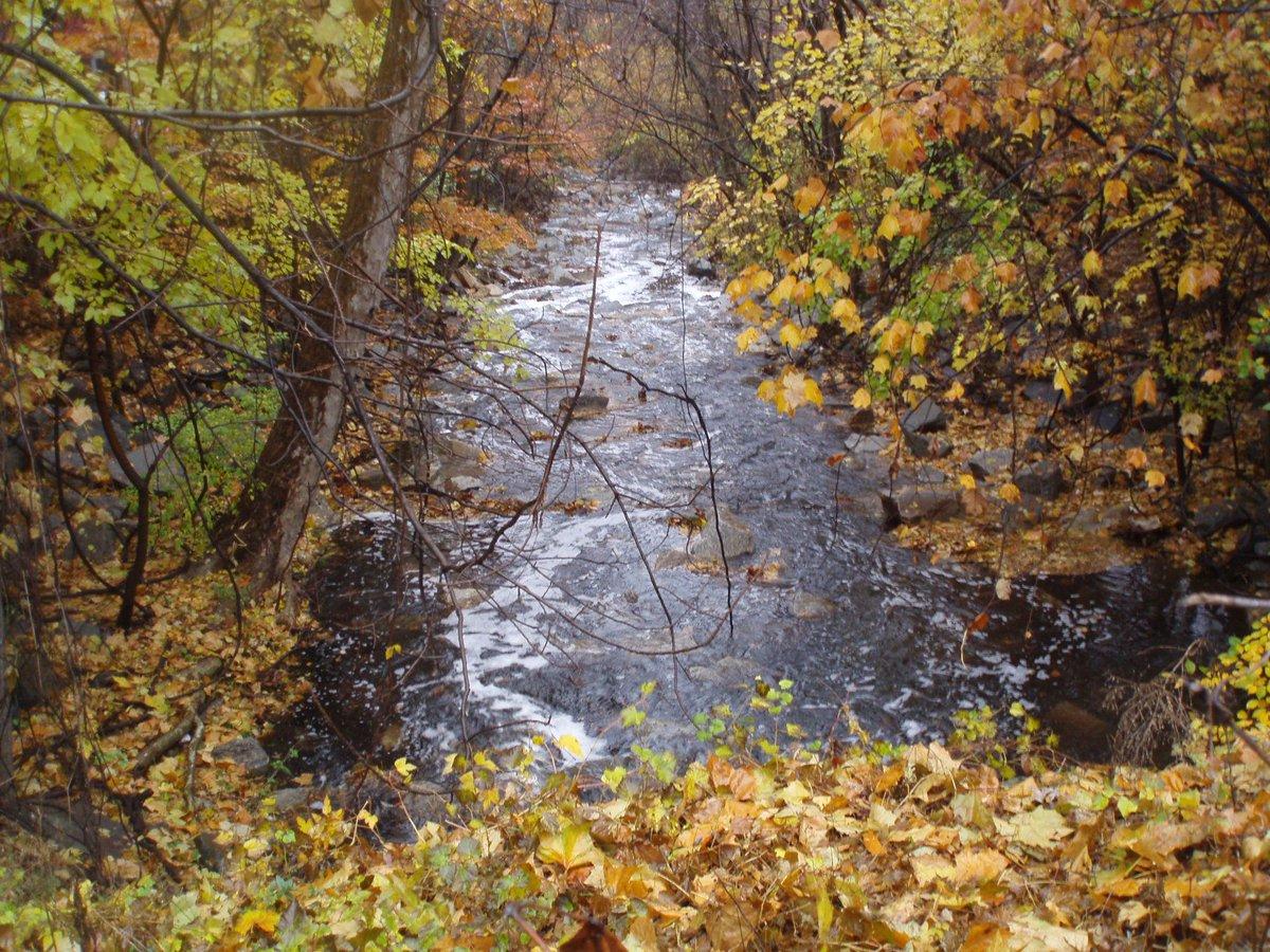 virginia natural landscape assessment