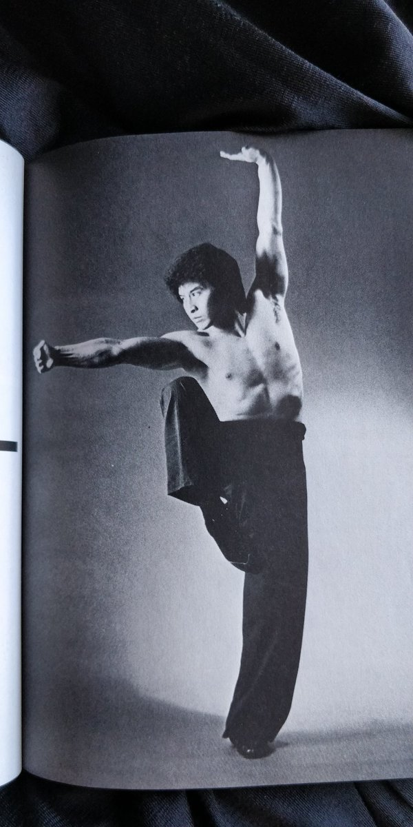 I was looking at an old kung fu book for pose ideas and there's some good stuff in here