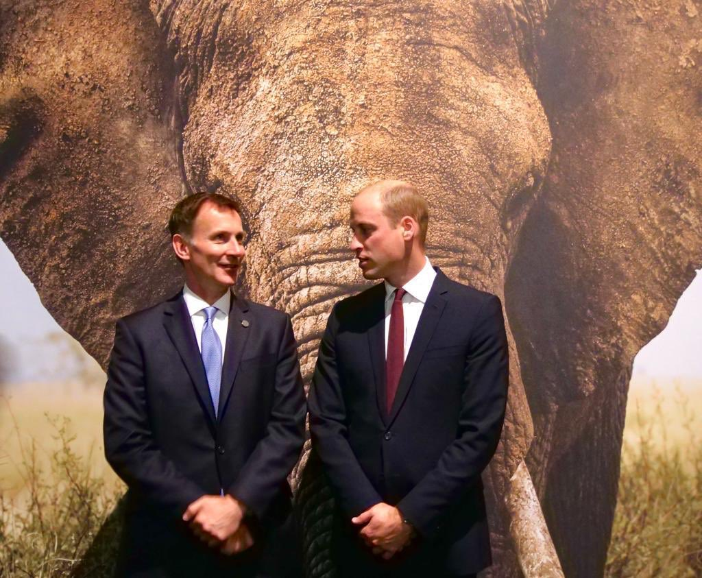 More than 80 countries  here in London earlier today to help #EndWildlifeCrime   <br>http://pic.twitter.com/gfBo2yj4ZW