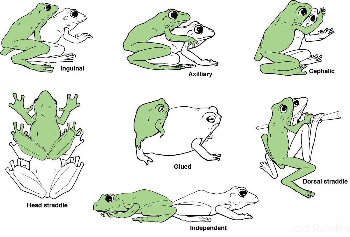 sexdate i frogn